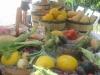 greenacres farm2